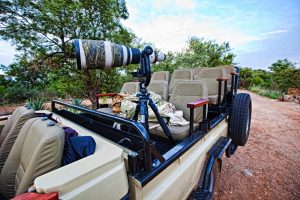Idube Photo Safaris