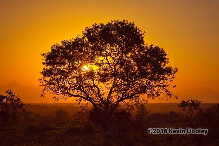 Sunset and Sunrise Photography on Safari